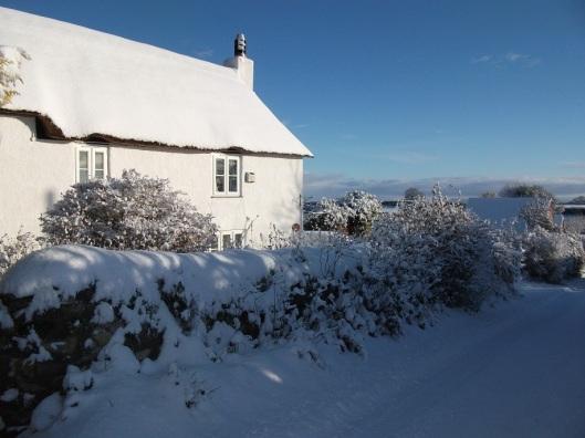 snowyhouse4